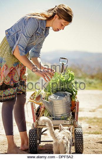 Junge Frau mit Bauernhof produzieren auf Seite Warenkorb Stockbild