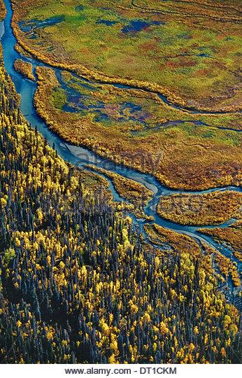 Tana Valley Wrangell-St. Elias Nationalpark Alaska USA Luftbild Feuchtgebiete Wrangell-St. Elias USA Stockbild