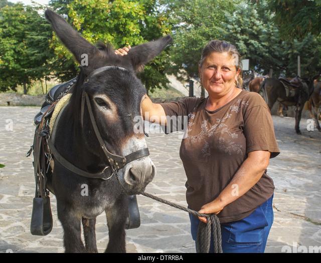 Female Donkey Stockfotos & Female Donkey Bilder - Alamy