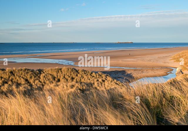 Blick über die wunderschöne Bamburgh Strand in Richtung Farne Islands, Northumberland, England. Frühling Stockbild