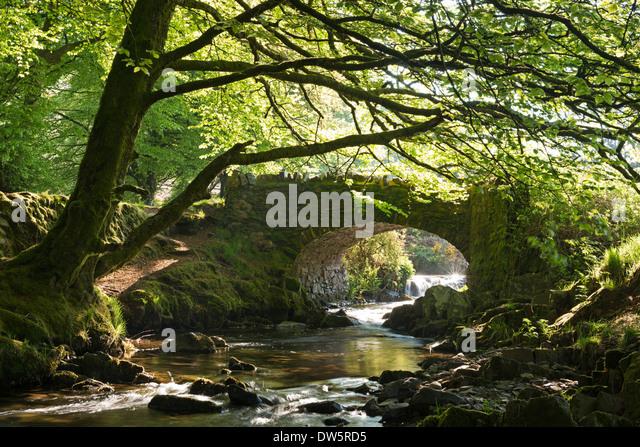 Malerische Räuber-Brücke in der Nähe von Oare, Exmoor, Somerset, England. Frühjahr 2013 (Mai). Stockbild