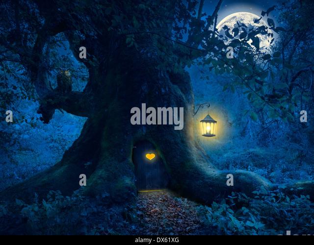 Magische Nacht mit einem kleinen Haus in den Stamm eines alten Baumes im Zauberwald. Stockbild
