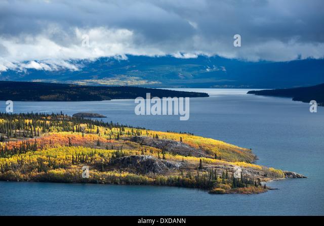 Bove Island, Tagish Lake, Yukon Territorien, Kanada Stockbild