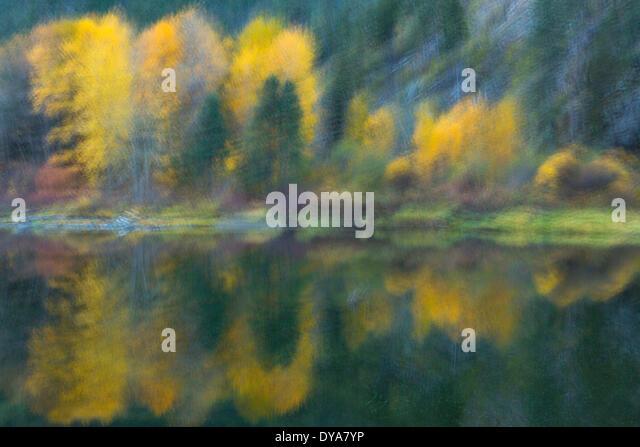Herbst Herbst Farbe experimentieren mehrere Bilder abstrakt impressionistische impressionistischen Reflexion Bach Stockbild