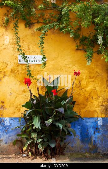 Eine verwitterte Wand in einem abgelegenen Teil des ländlichen Portugal. Stockbild