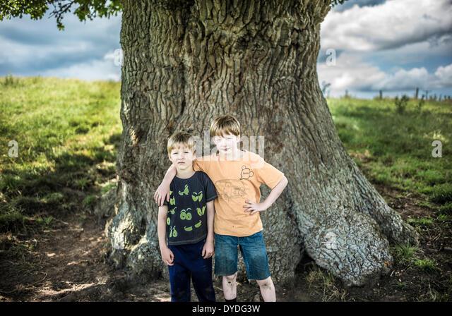 Zwei Brüder stehen unter einer alten Eiche. Stockbild