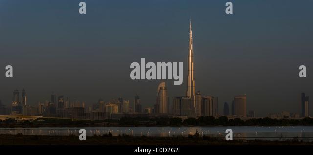 Rosaflamingos Fütterung und die Sonne fangen das Burj Khalifa, Dubai, Vereinigte Arabische Emirate (Phoenicopterus Stockbild