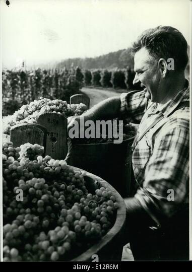 25. Februar 2012 - Beginn des Jahrgangs; Die Zeit wird bald kommen, für den Jahrgang in den deutschen Wein Stockbild