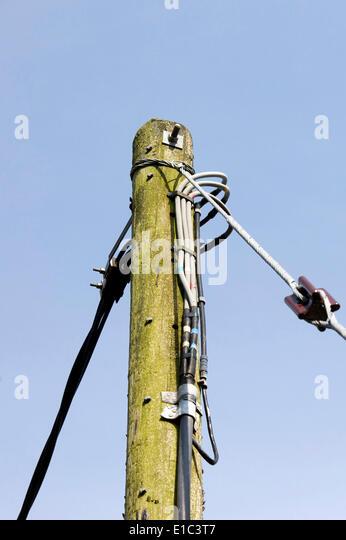 Stromkabel auf pole Stockbild