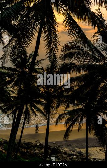 Unglaubliche indischen Stränden, schwarzen Strand Varkala. Kerala, Indien. Stockbild