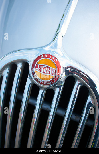 Jaguar XK 1450 Grill und Abzeichen. Stockbild