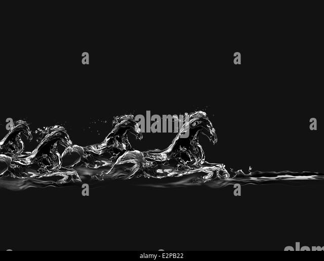 Eine Gruppe von Pferden aus Wasser galoppieren im Wasser auf einem schwarzen Hintergrund gemacht. Stockbild