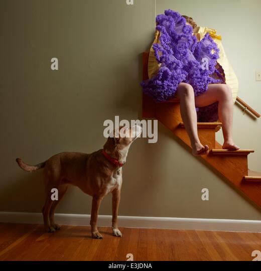 Frau sitzt auf der Treppe mit Rock bedeckt Gesicht und Hund suchen sie an Stockbild