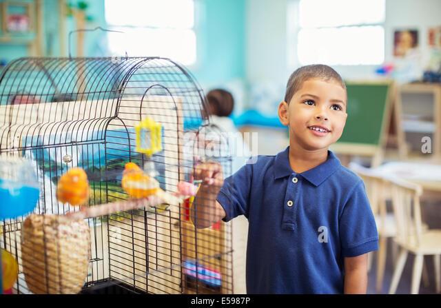 Schüler untersuchen Vogelkäfig im Klassenzimmer Stockbild