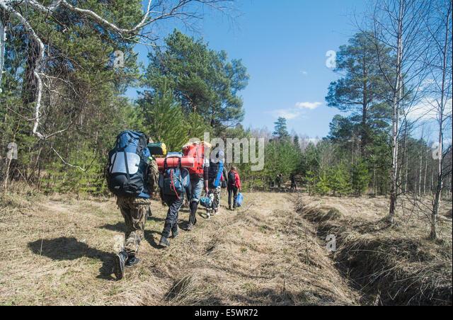 Rückansicht des jungen Wanderer mit Rucksäcken auf Waldweg Stockbild