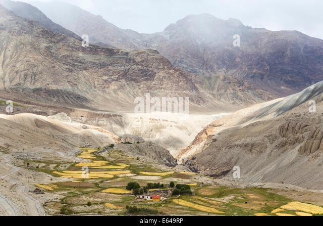 Nubra Valley, Ladakh, Indien Stockbild