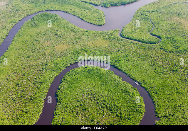 Segeln Sie, Boot & Luftaufnahme des Regenwaldes, Daintree River, Daintree Nationalpark, Queensland Australien Stockbild