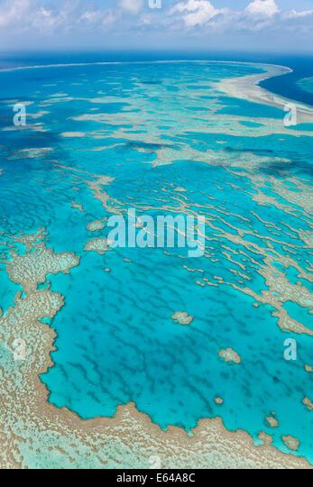 Great Barrier Reef, Queensland, Australien Stockbild
