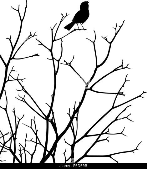 Bearbeitbares Vektor Silhouette einen Vogel singen am oberen Rand ein Kahler Baum Stockbild