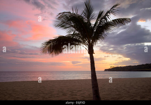 Strand und Sonnenuntergang am Hulopoe Beach. Four Seasons at Manele Bay auf Hawaii Stockbild