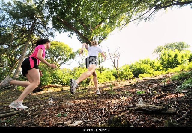 Zwei junge Frauen Läufer läuft bis Waldweg Stockbild