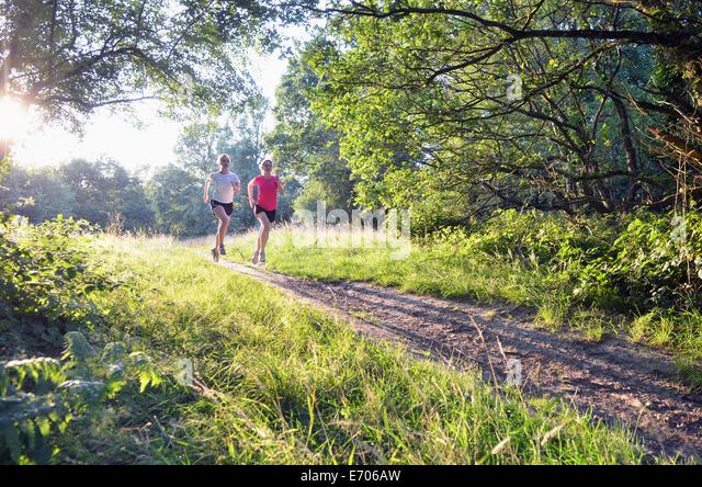 Zwei junge Frauen Läufer entlang Wald zu verfolgen, morgen Stockbild