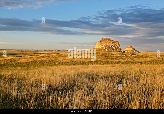 Gräser und Pawnee Buttes, Pawnee National Grassland, Colorado USA - Stock-Bilder