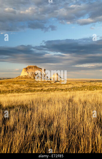 Gräser und Pawnee Buttes, Pawnee National Grassland, Colorado USA Stockbild