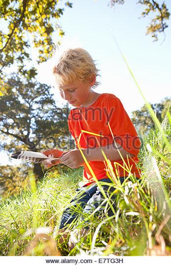 Junge Prüfung Feder im ländlichen Bereich Stockbild