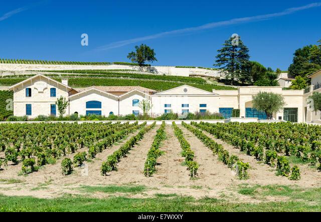 Chateau Pavie, ein Grand Cru Classe Premiere Wein in St. Emilion, Bordeaux, Frankreich Stockbild