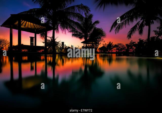 Tropisches Schwimmbad Stockbild