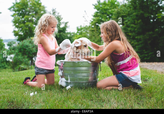 Zwei Schwestern Baden pet Labrador Retriever Welpen Stockbild