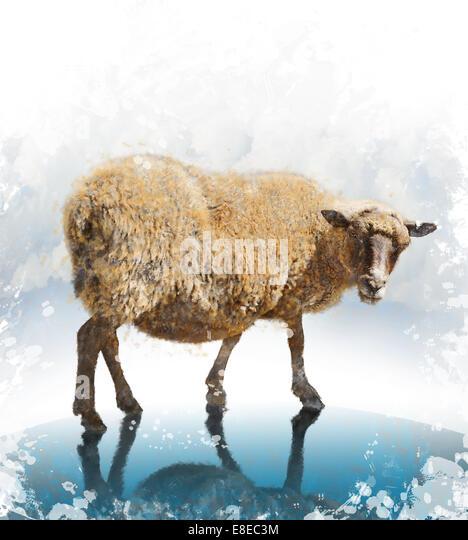 Digitales Aquarell des Gehens Schafe Stockbild