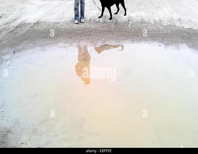Reflexion in Pfütze Stockbild