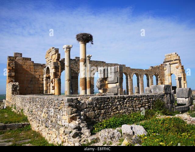 Marokko, Volubilis, Moulay Idriss, alte Ruinen der antiken römischen Stadt Stockbild