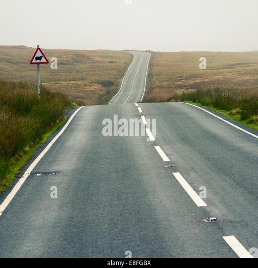 Gerade Straße und ein Schaf Tier überqueren unterzeichnen Stockbild