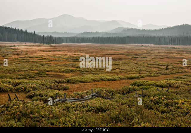 USA, Idaho, Custer County, Stanley, Smokey Mountains in nebligen Tag Stockbild