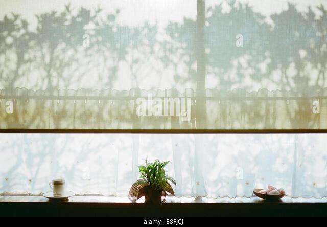 Fensterbank und Schatten Stockbild