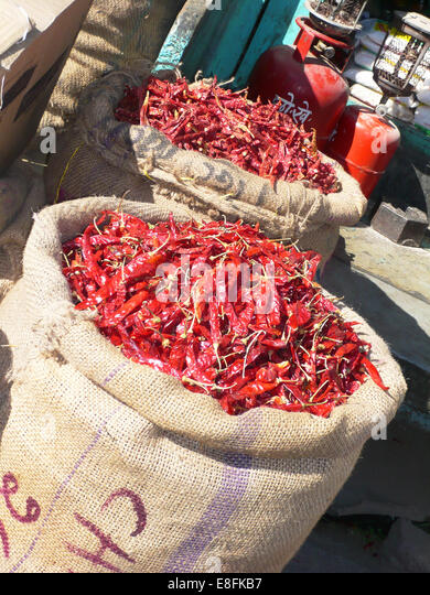 Säcke mit roten Chilis, Indien Stockbild