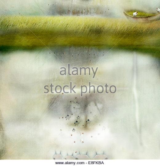 Abstraktes Bild von Teich Stockbild