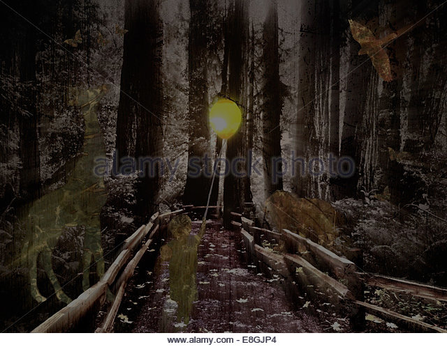 USA, Kalifornien, San Francisco, abstrakte jungen Weg im Wald zu gehen (4-5) Stockbild