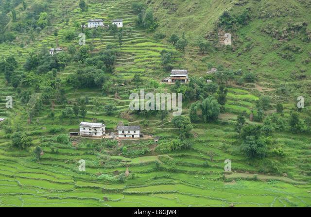 Vereinzelte Häuser auf Hügel Stockbild