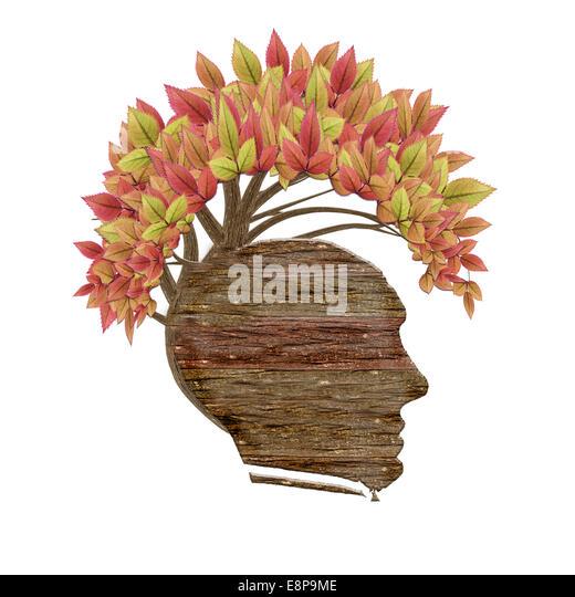 isolierte menschliche Holzkopf und Blätter Stockbild