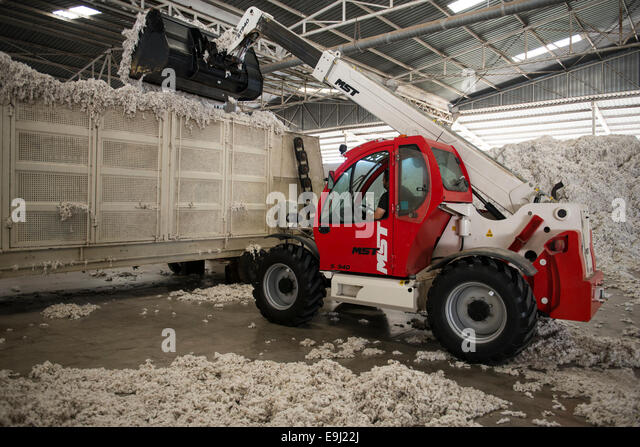 Türkei, Menemen, Entkörnung Fabrik, Verarbeitung der geernteten konventionelle Baumwolle, Lieferung der Stockbild