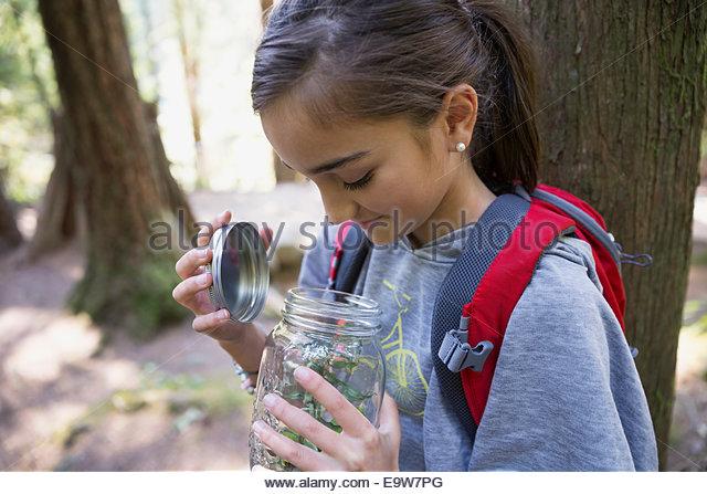 Mädchen im Wald Eröffnung JAR-Datei mit Pflanzen Stockbild