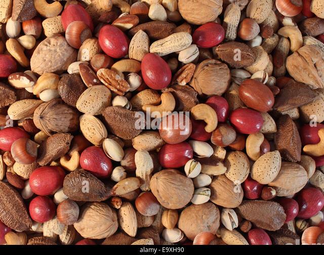 Muttern-Hintergrund mit einem gemischten Sortiment an Samen und Pecan Nussbaum Paranuss Erdnuss, Haselnuss-Pistazie Stockbild