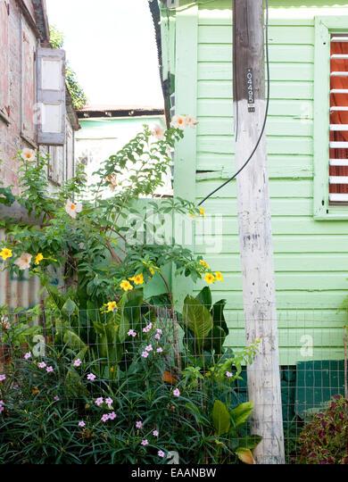 Detail der tropischen Häusern und Anlagen in der Karibik Stockbild