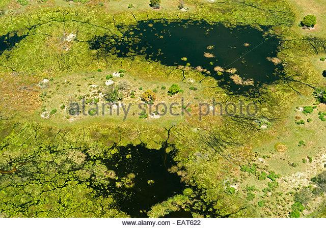Eine Luftaufnahme des Okavango Delta in Botswana, Afrika. Stockbild