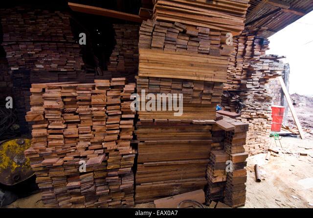 Holzlatten aus Regenwald-Bäume Schneiden gestapelt in einer Protokollierung Mühle zu verkaufen. Stockbild