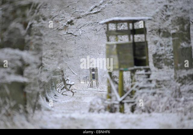 einige Hochsitze in einem Pfad durch den tief verschneiten Wald, Deutschland Stockbild